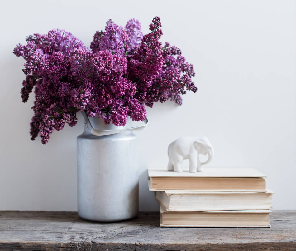 lilacs and books